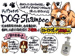 DOG POP.001